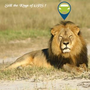 Animal GPS Tracking