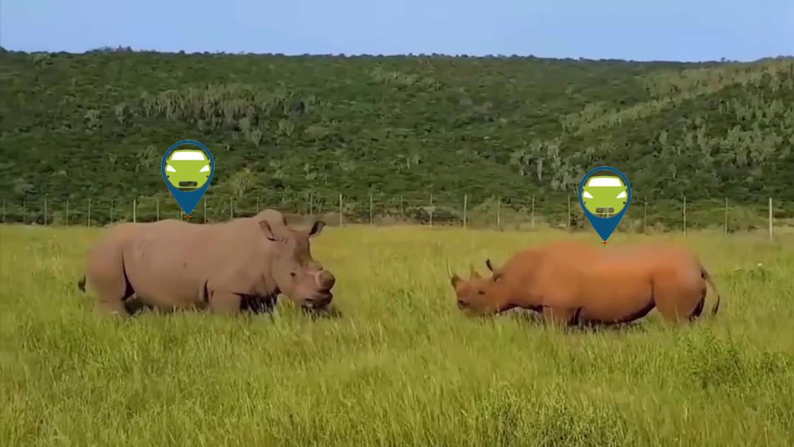 GPS Wild Animals tracker